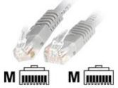 StarTech.com STARTECH STARTECH  Patch Cable - RJ45 (M) - RJ45 (M) - UTP - Cat 6 - 1 ft - Gray (StarTech.com: C6PATCH1GR)