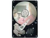 SEAGATE  DIG ENT DB35 320GB SATA 8MB 7200.3 (SEAGATE: ST3320820SCE)