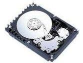 Acer  Acer - Hard drive - 300 GB - standard - Ultra320 SCSI - 10000 rpm (ACER: 91.AB033.063)