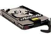 HP HEWLETT PACKARD  73GB INT NO S/W 10K 80U4 HDD (Hewlett-Packard: A7528A)