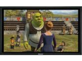 PANASONIC  42IN HD PLASMA DISPLAY UKA SERIES (PANASONIC: TH42PH10UKA)
