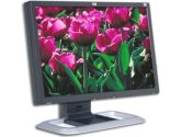 "HP L2045w 20"" Widescreen LCD Monitor - 5ms, 600:1, WSXGA+ 1680x1050, DVI, Black-Silver (Hewlett-Packard: RD125AA#ABA)"