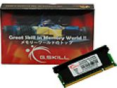 G.SKILL 2GB 200-Pin DDR2 SO-DIMM DDR2 667 (PC2 5300) Laptop Memory (G.Skill: F2-5300CL5S-2GBSK)