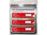 G.SKILL F3-10666CL9T-6GBNQ 6GB DDR3 3X2GB DDR3-1333 CL 9-9-9-24 Triple Channel Memory Kit (G.SKILL: F3-10666CL9T-6GBNQ)