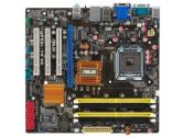 ASUS P5QL-VM DO/CSM Micro ATX Intel Motherboard (ASUS: P5QL-VM DO/CSM)