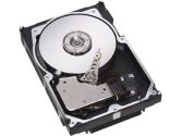 146GB 15K 6GBPS SAS 2.5IN (IBM Corporation: 42D0667)