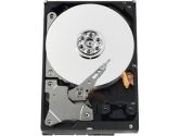 "Western Digital AV-GP 750GB 3.5"" SATA 3.0Gb/s Internal AV Hard Drive -Bare Drive (Western Digital: WD7500AVDS)"