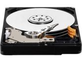 Western Digital HDD 500GB WD5000BPVT SATA 3GB/S 5400RPM 8MB Cache Mobile HD (Western Digital WD: WD5000BPVT)