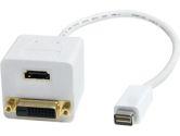 StarTech 1 ft. Mini DVI to DVI-D & HDMI Splitter Cable - M/F (STARTECH: MDVISPL1DH)