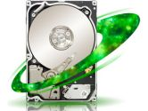 Seagate Constellation.2 500GB 7200RPM SAS 64MB Cache 2.5IN Enterprise Internal Hard Drive (Seagate: ST9500620SS)
