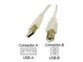 Cables To Go 9.84 ft. USB 2.0 A/B Cable (Cables to Go: 13400)