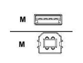 Tripp Lite 10 ft. USB Cable (Tripp Lite: U022-010)