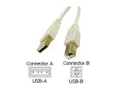 Cables To Go 15ft USB AB Device USBA/USBB . (Cables to Go: 13401)