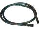 3WARE Multi-Lane Internal SFF-8087 to SFF-8087 Serial ATA Cable 0.6M
