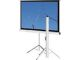 "Elite T99UWS1 Portable Tripod Front Projection Screen (70x70"")"