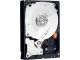 Western Digital WD2503ABYX RE4 250GB 3.5IN SATA 7200 RPM 64MB Enterprise Hard Drive